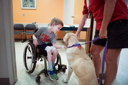 Blind therapy dog brings joy to children in hospital