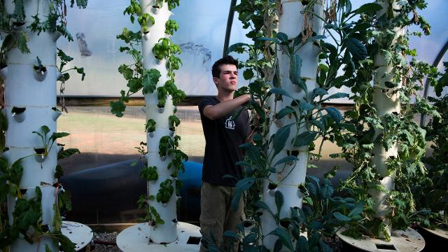 Mill Village Farms provides youth an opportunity to learn about agriculture all while earning money and learning finance skills.