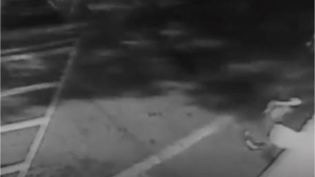 Surveillance video from outside Camperdown Academy shows two individuals setting fire to a recycling bin outside the school Saturday night.