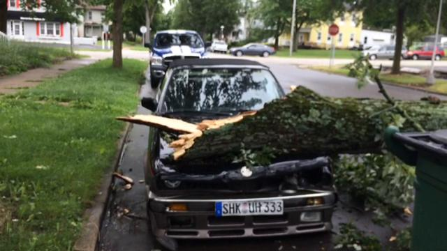 A limb fell across the first block of North 14th Street on Tuesday, damaging a BMW that was parked underneath it.
