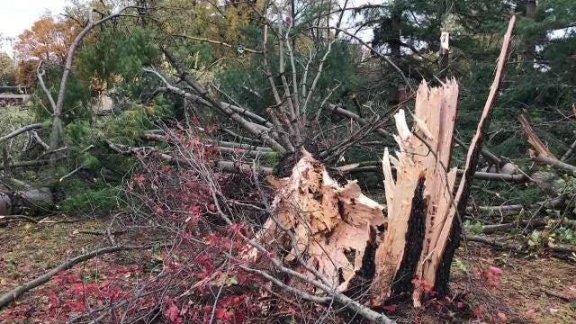 A look at damage in Yorktown, Indiana after severe weather on Sunday, Nov. 5, 2017.