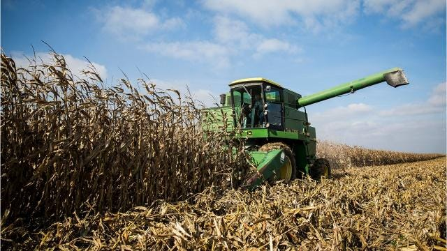 Farmers join efforts to harvest Joe Hottinger's hundreds of acres following his tragic death.