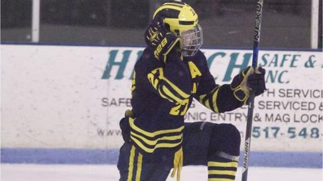Midseason Top 5 Hockey Players in Livingston County