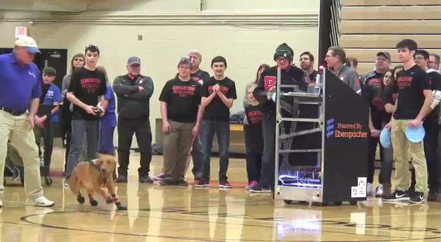 Brighton's robotics team, the Techno Dogs, built a robot and demonstrated its flying disk-throwing talents as Zeke the Wonder Dog demonstrated his talent at retrieving them.