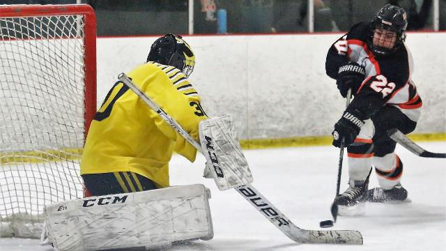 Watch Livingston County's 8 hockey all-staters in action