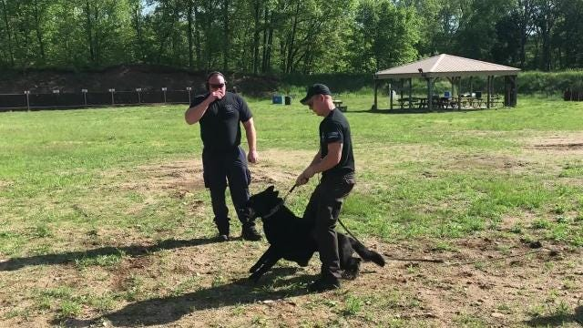 About 45 teams were in Battle Creek for a seminar on high risk deployments for police dogs and their handlers. Training was designed to place obstacles for the dogs including shots fired and explosion.