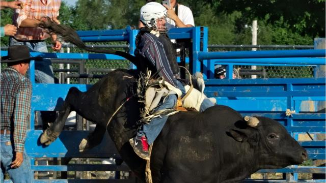 "Olivet College assistant track and cross country coach Andrew Benkovsky and Battle Creek Enquirer reporter Nick Buckley each ride a bull at Lost Nations Rodeo's ""Friday Night Under the Lights"" amateur bull riding event at Calhoun County Fairgrounds. Photo courtesy of Jeff Wilson."