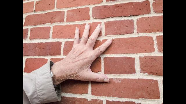 Building history, brick by brick