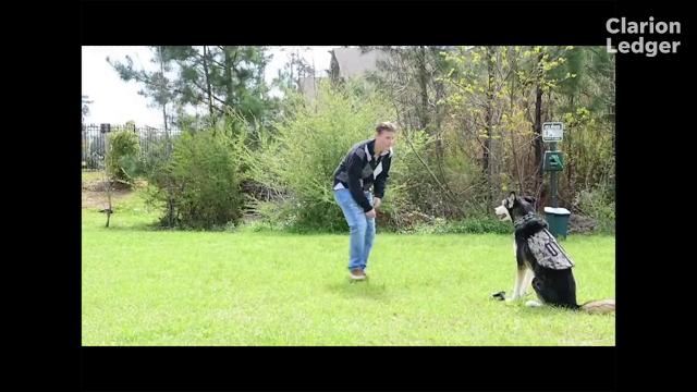 Catherine Best and Jingles her service dog companion were the inspiration for a new law to allow service dogs for those with PTSD in Mississippi to accompany their handlers into public buildings..