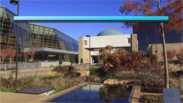 Jackson Weather Forecast, Tuesday, Nov. 20