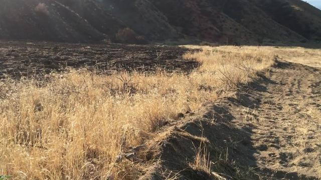 Large refuse fire reported Thursday evening in Palm Desert