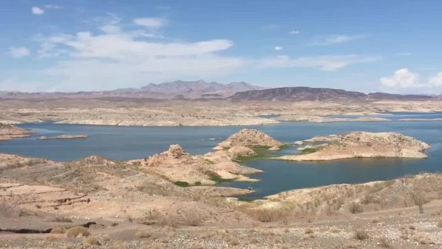 The Colorado River provides water for seven western states and Mexico. Heavily overallocated and ravaged by years of drought, the river is also under growing strains due to climate change.