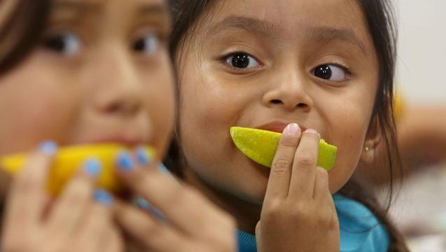 As school districts look for ways to provide healthier, fresher food to their students, many are bringing in farm-to-school programs that cut cost and reduce the time between harvest and consumption.