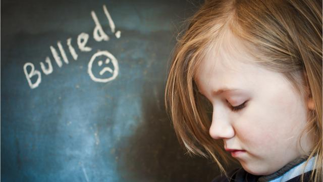 des guidelines on countering bullying behaviour