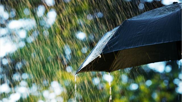 Tropical moisture could hang around for days. How long and how much?