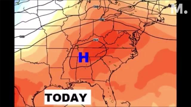 Blazing heat is back with us and not many storms.  But, I'll tell you how the rain chances will get a little better later in the week.  We will take e a peek at the Labor Day weekend forecast, and we'll check the tropics.