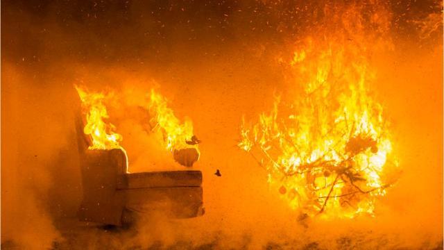 Burning Christmas Tree.Christmas Tree Safety Tips