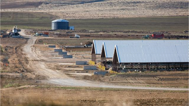 How an Oregon mega dairy is tapping an off-limits aquifer