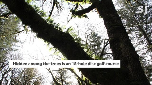 Disc golf course comes back to life in Stayton