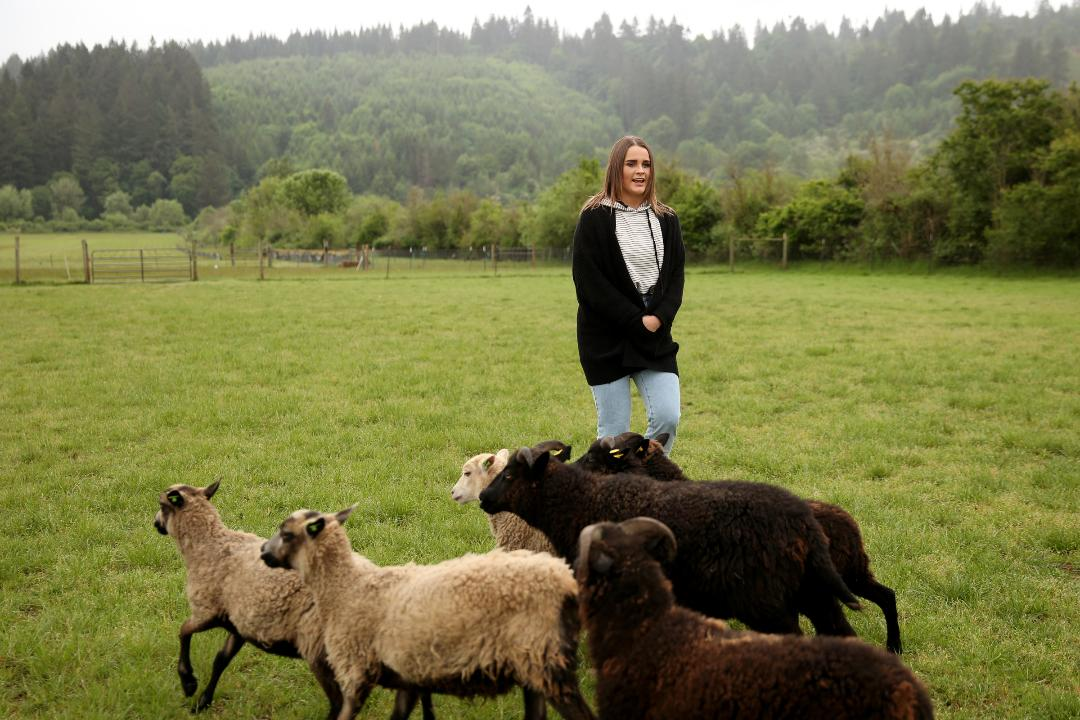 Ahead of the 81st Northwest Championship Sheepdog Trial, Statesman Journal entertainment reporter Abby Luschei learns to herd.