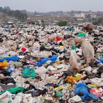 """""""Beat Plastic Pollution"""", the theme for World Environment 2018, urges governments, industry, communities, and individuals to come together and explore sustainable alternatives and urgently reduce the production and excessive use of single-use plastic polluting our oceans, damaging marine life and threatening human health."""
