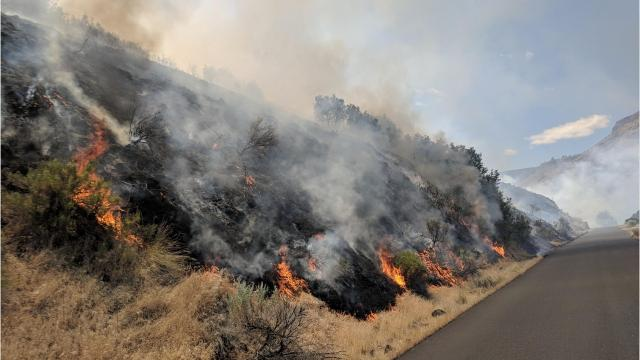 With hot weather arriving in Oregon, wildfires are beginning to spring up around the state. Here's a roundup of fires currently burning in the state.
