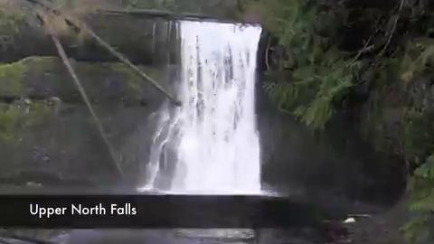 A 1.6 mile hike to Upper North Falls and down to North Falls at Silver Falls State Park.