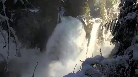 Sahalie Falls, located off Highway 126 near milepost 5, just south of Santiam Junction, thunders with high winter flows.