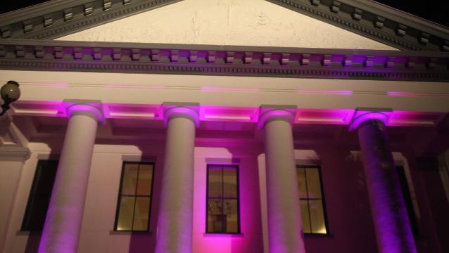 Watch it: Paint the Town Pink with the Tallahassee Democrat