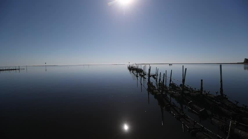 Wakulla Environmental Institute Oyster Co Op Seal Agreement