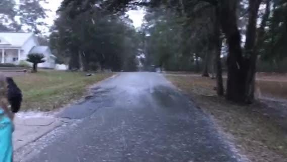 Watch it: Snowing in North Tallahassee