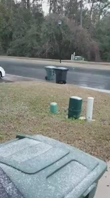 Watch it: Snow in Tallahassee (Linda McDonald)