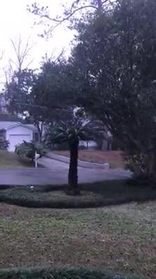 Watch it: Snow in Capital Hills area (Meri Culp)