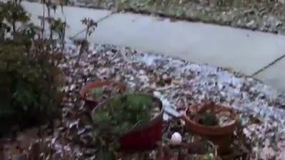 Watch it: Snow in Ox Bottom area (Tim Atkinson)