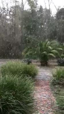 Watch it: Snow in Killearn Lakes area (Melanie Floyd Hutchinson)