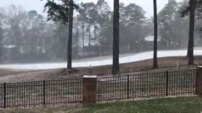 Watch it: Snow in Tallahassee (Debbie Hernandez)
