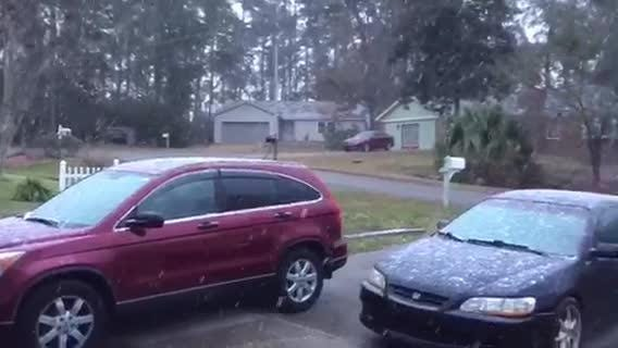 Watch it: Snow in Tallahassee