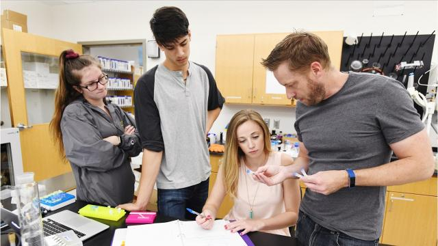 About 20 students from Mount Saint Mary College in Newburgh conducted research projects this summer as part of the school's annual Summer Undergraduate Research Experience — or SURE — program, which pairs professors with student groups. This summer's projects explored a wide range of topics. Video by Jack Howland/Poughkeepsie Journal