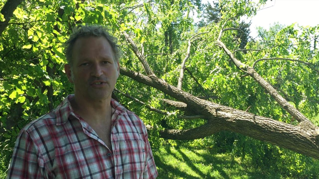 According to Central Hudson, 11 utility poles were downed, and 6,500 customers were without power due to a microburst in the Gardiner area. Jeroen Keessen's property suffered damage from several trees that were knocked down from the microburst.