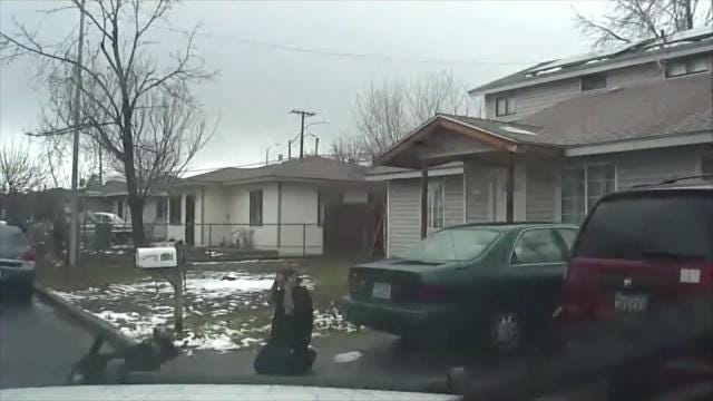 Raw video: Police dog sicced on surrendering fugitive who had fled from police