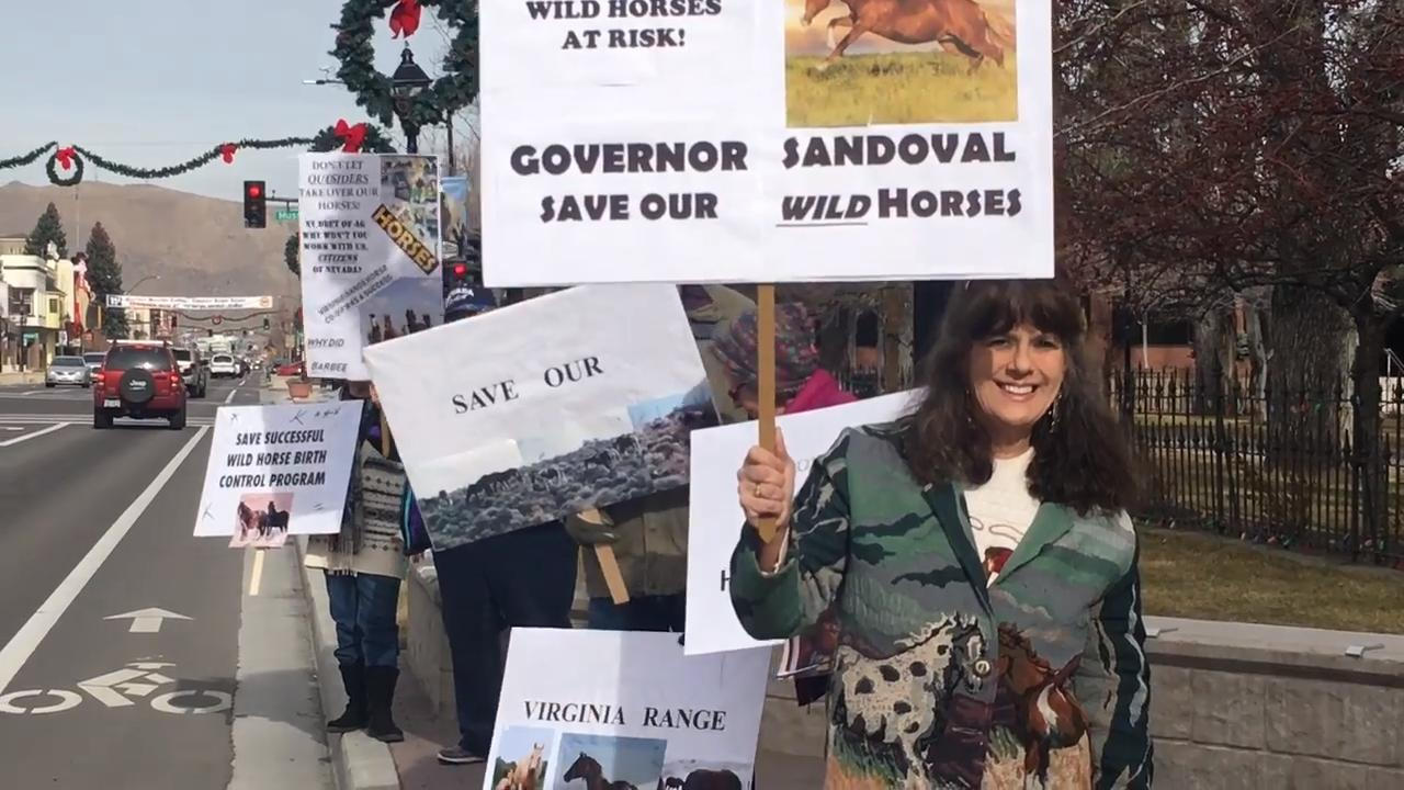 Protestors gathered Wednesday, January 3, 2018 in Carson City to call on Nevada Gov. Brian Sandoval to undo a decision by the Department of Agriculture to offer approximately 3,000 free range horses to a private group.