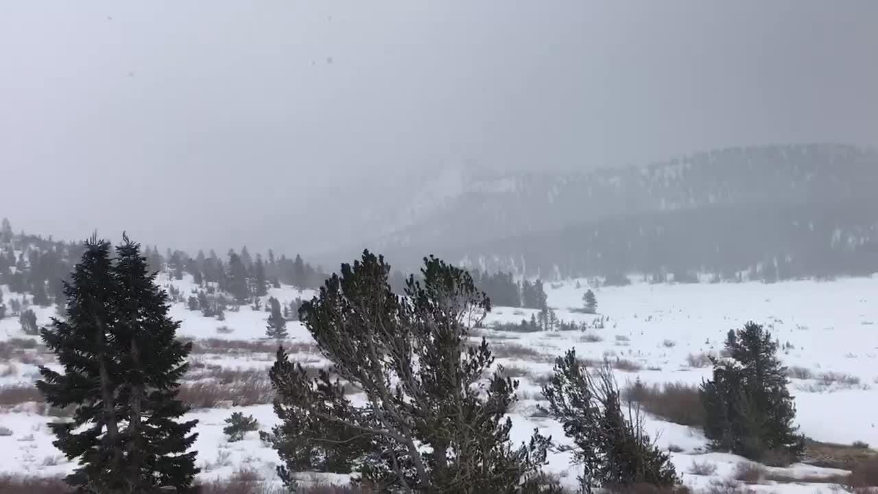 Raw video of snow falling over Mt. Rose Highway on April 29, 2018.