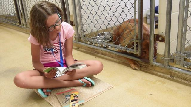 Book Buddies program brings young volunteers, animals together