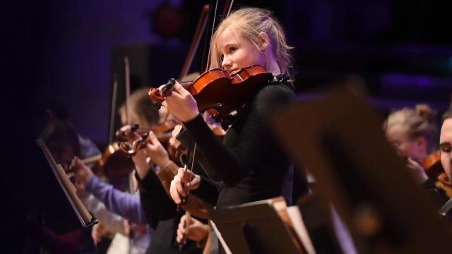 Violinist Mark Wood