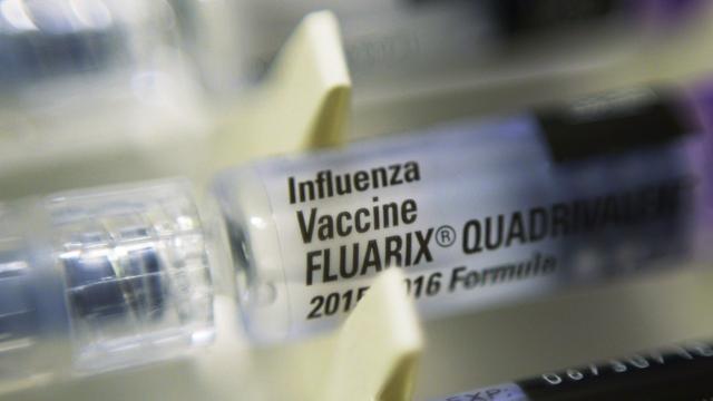 Works Begins on Next Year's Flu Vaccine