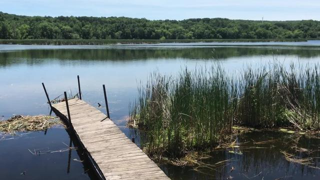Property owners around Linneman Lake are facing a big and growing problem:Bogs have knocked into docks, blocked boats and taken over nearly a third of the lake.
