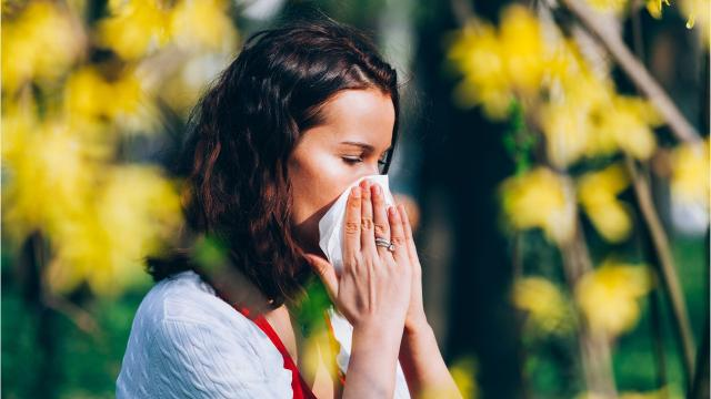 Climate change has already worsened allergy season. Plants are producing more pollen that's more potent, over a longer period time. Vegetation is also moving north, exposing new locations to allergens.