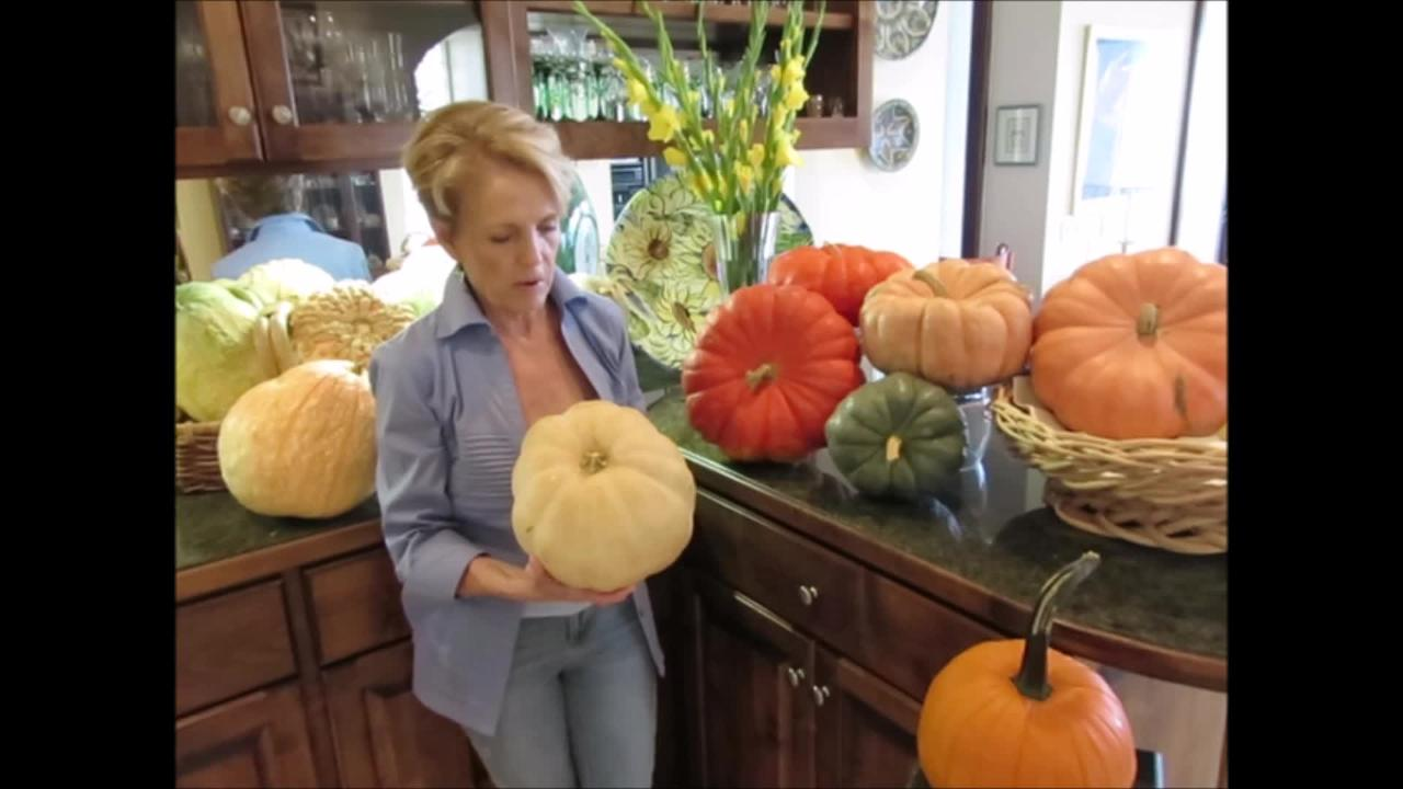 Chef Celia Casey discusses decorative and heirloom pumpkins.