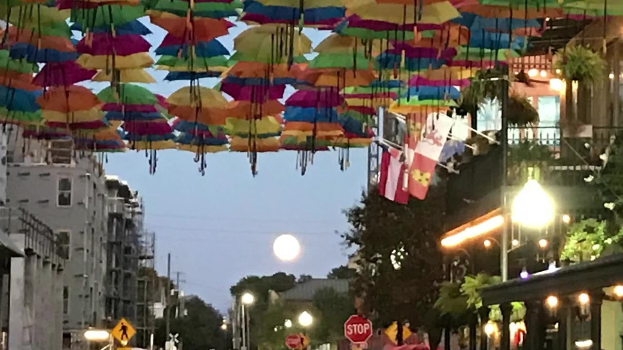 Foo  Foo Festival feature packs downtown