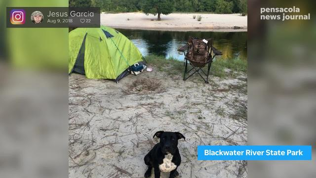 Here are the best campgrounds in Northwest Florida